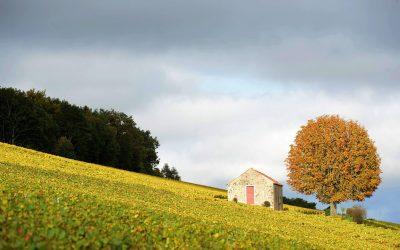 Les climats de Bourgogne